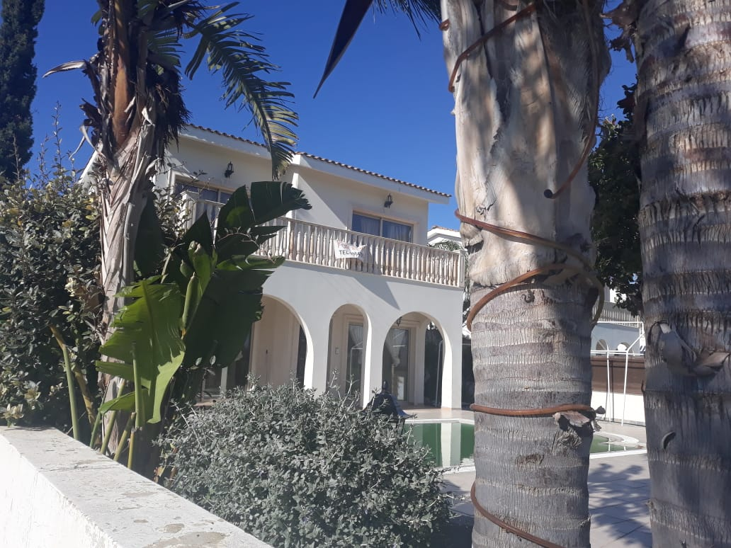 long term rent Peyia Paphos